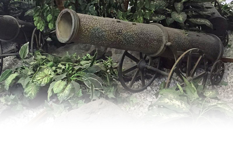 cannon_IMG_2843